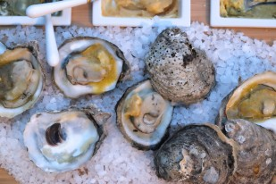 Grilled Oysters w/ Japanese Compound Butters