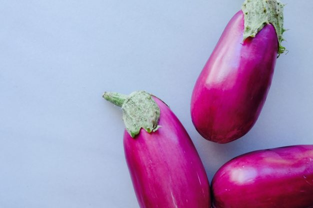 In the Garden: Eggplants